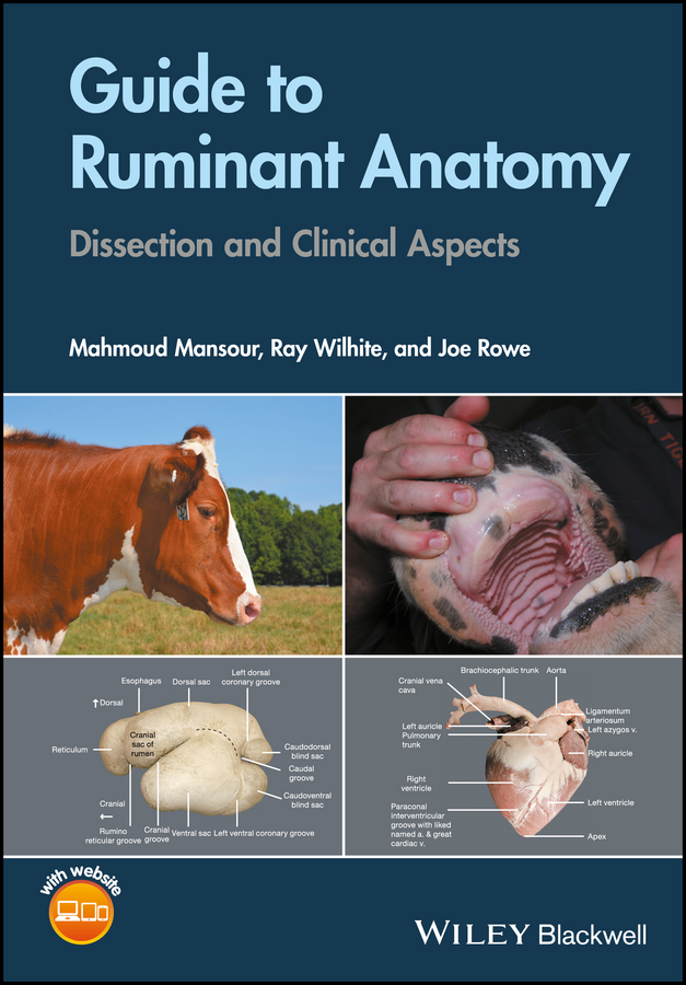 Guide to Ruminant Anatomy. Dissection and Clinical Aspects