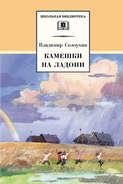 Электронная книга «Камешки на ладони (сборник)»
