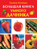 Электронная книга «Большая книга умного дачника»