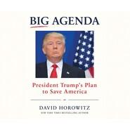 Big Agenda - President Trump\'s Plan to Save America (Unabridged)