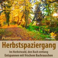 Herbstspaziergang: Phantasiereise Herbstwald, den Bach entlang - Entspannen mit frischem Bachrauschen