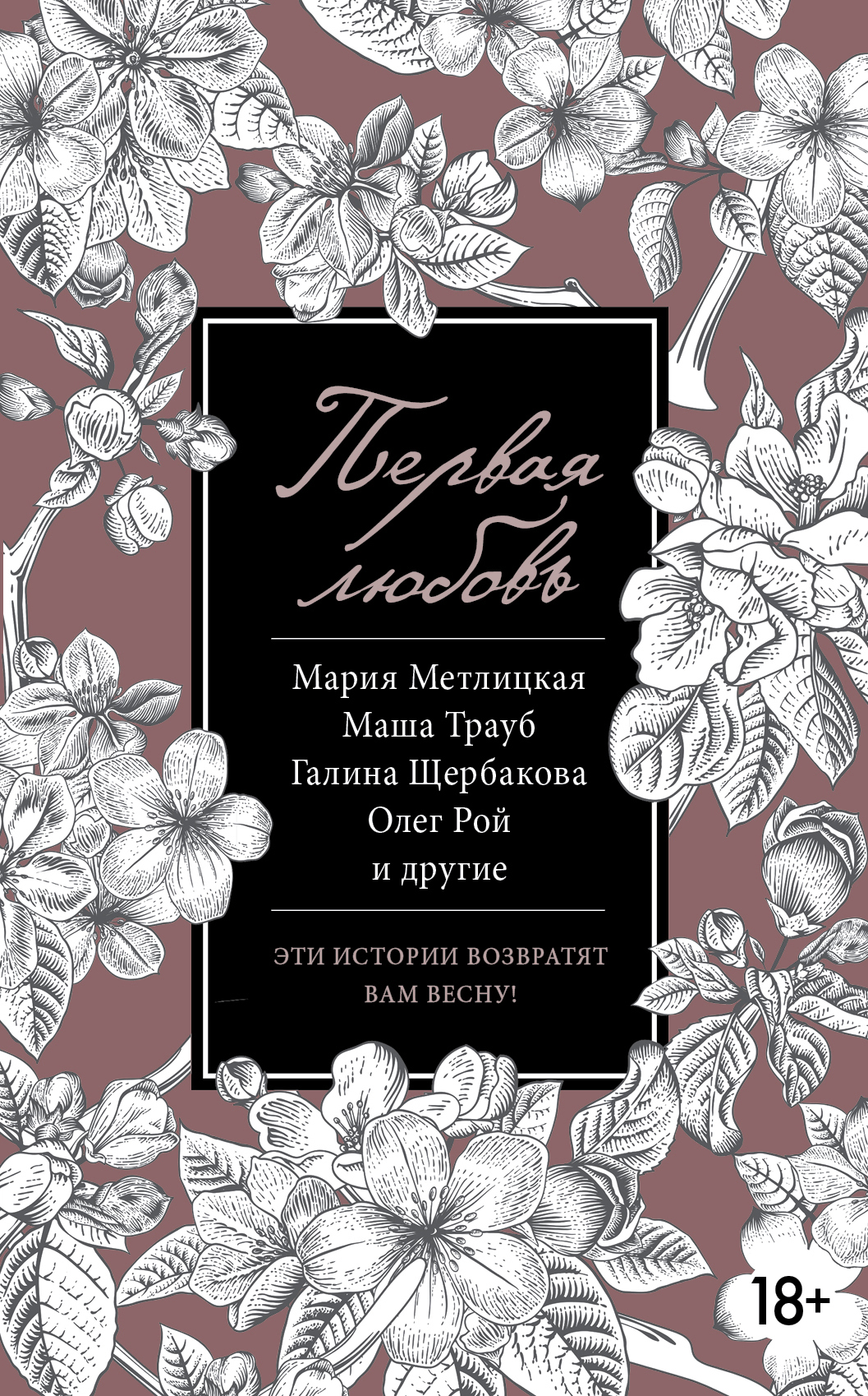 Андрей Геласимов Первая любовь (сборник)