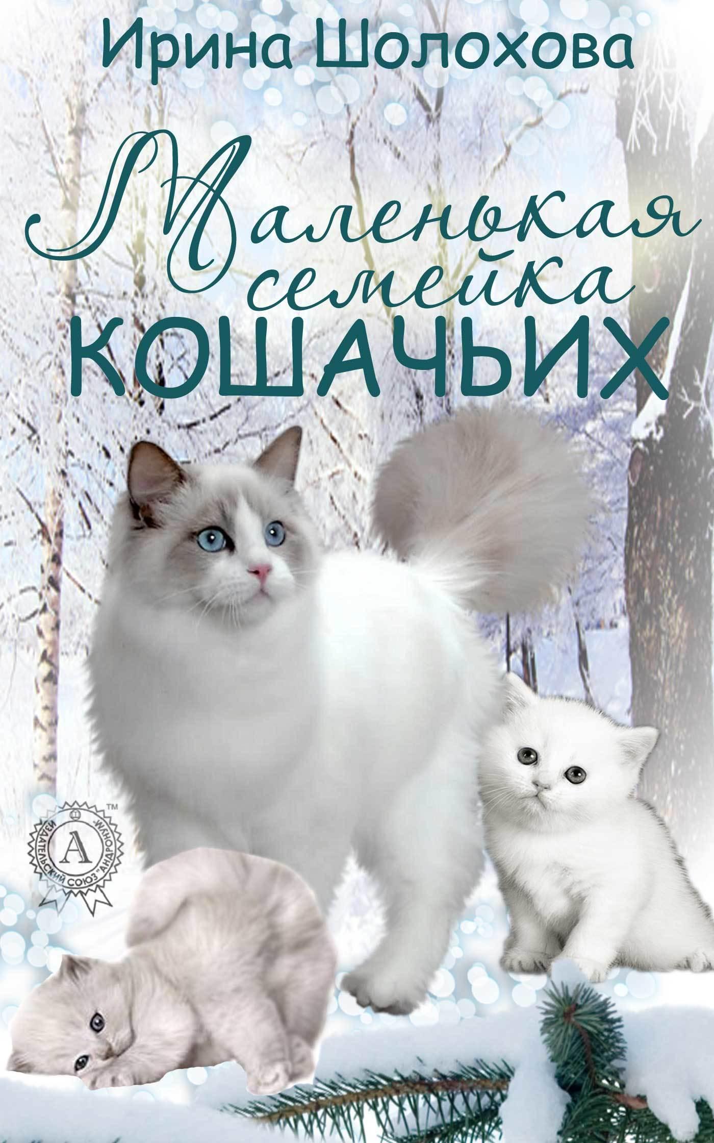 Ирина Шолохова Маленькая семейка кошачьих ирина шолохова классные и внеклассные истории 4 а