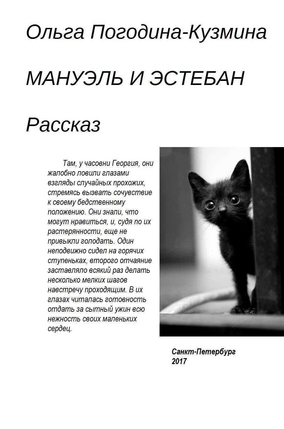 Ольга Погодина-Кузмина Мануэль и Эстебан ольга погодина кузмина посреди венеции