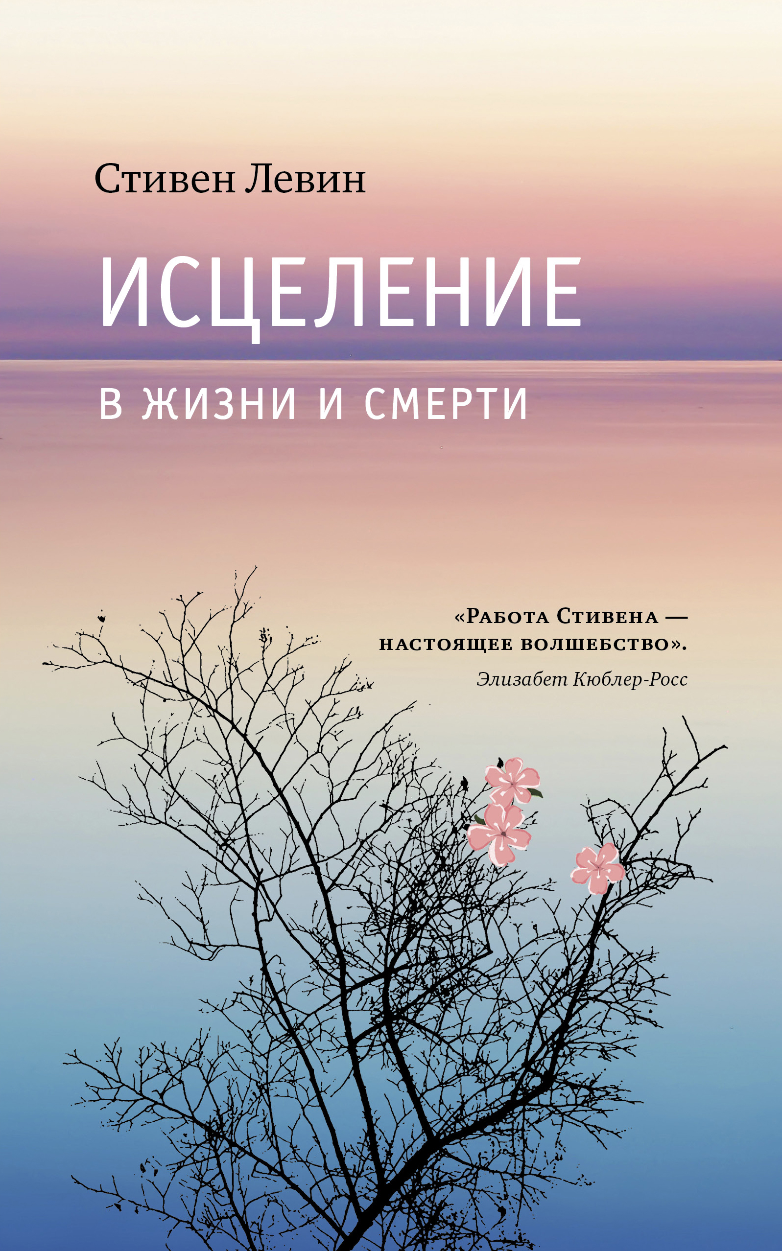 Стивен Левин Исцеление в жизни и смерти