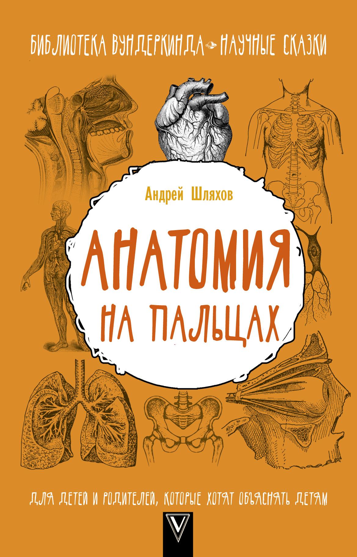 Андрей Шляхов Анатомия на пальцах. Для детей и родителей, которые хотят объяснять детям шляхов а л анатомия на пальцах для детей и родителей которые хотят объяснять детям