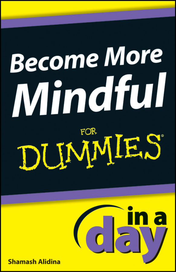 Shamash Alidina Become More Mindful In A Day For Dummies a mindfulness guide for the frazzled