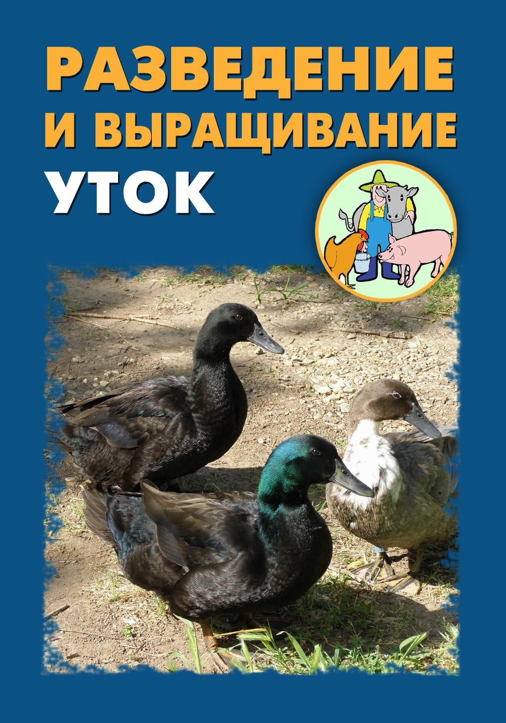 Илья Мельников Разведение и выращивание уток илья мельников разведение и выращивание собак