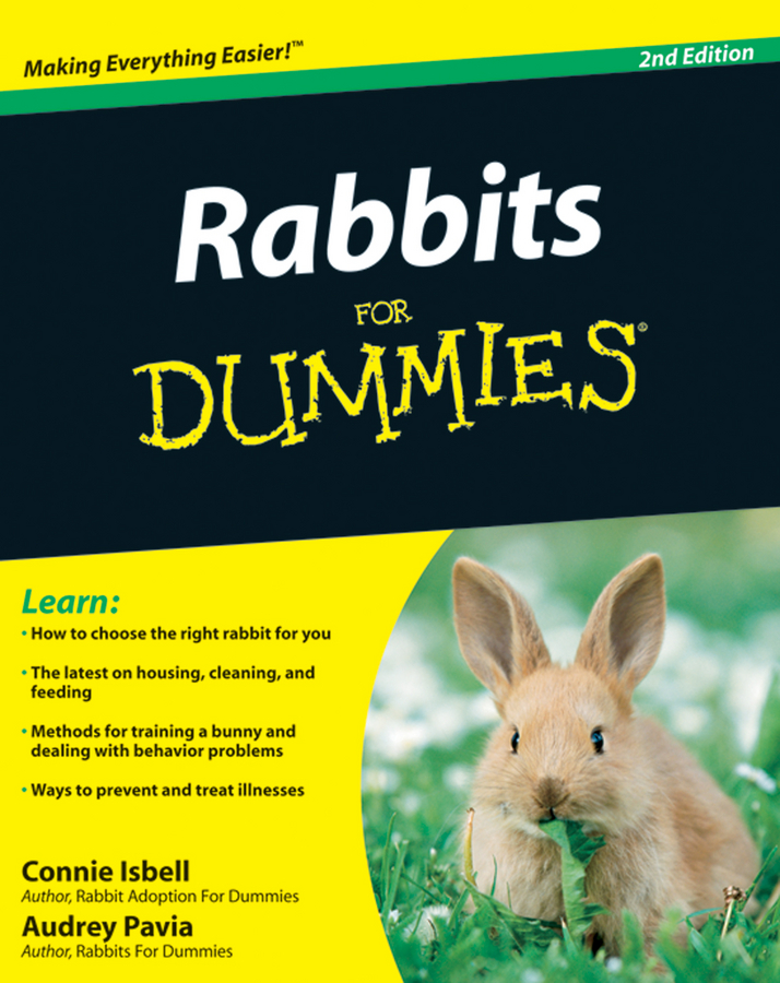 Audrey Pavia Rabbits For Dummies john h krahn from surviving to thriving a practical guide to revitalize your church