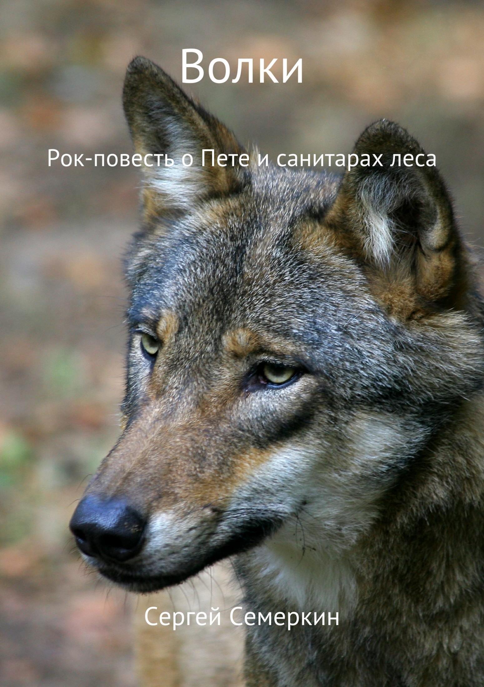 Сергей Владимирович Семеркин Волки сергей владимирович семеркин алло пожарная