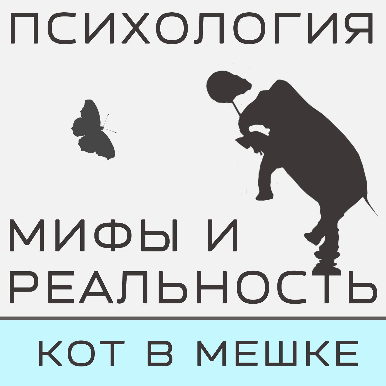 Александра Копецкая (Иванова) Кот в мешке! Часть 4 александра копецкая иванова кот в мешке с пб