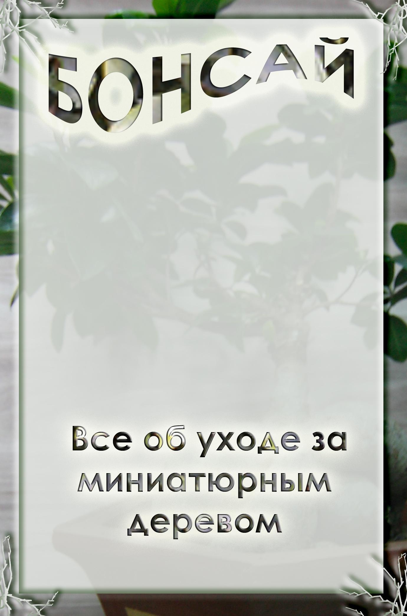 Илья Мельников Все об уходе за миниатюрным деревом все об уходе за лицом