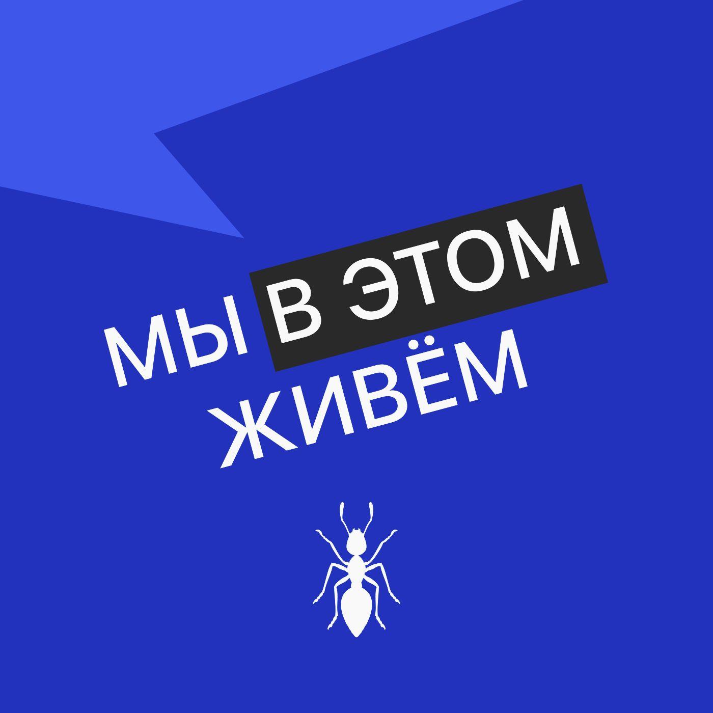 Выпуск № 29 сезон 2  Научный