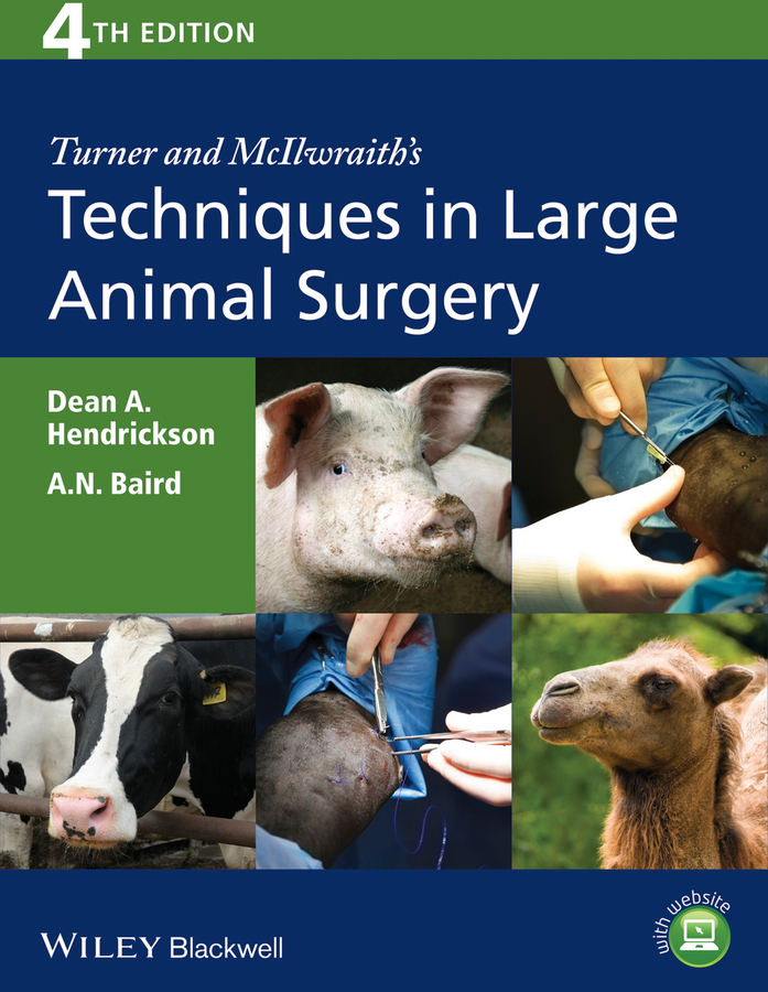 Hendrickson Dean A. Turner and McIlwraith's Techniques in Large Animal Surgery jan hawkins f advances in equine upper respiratory surgery