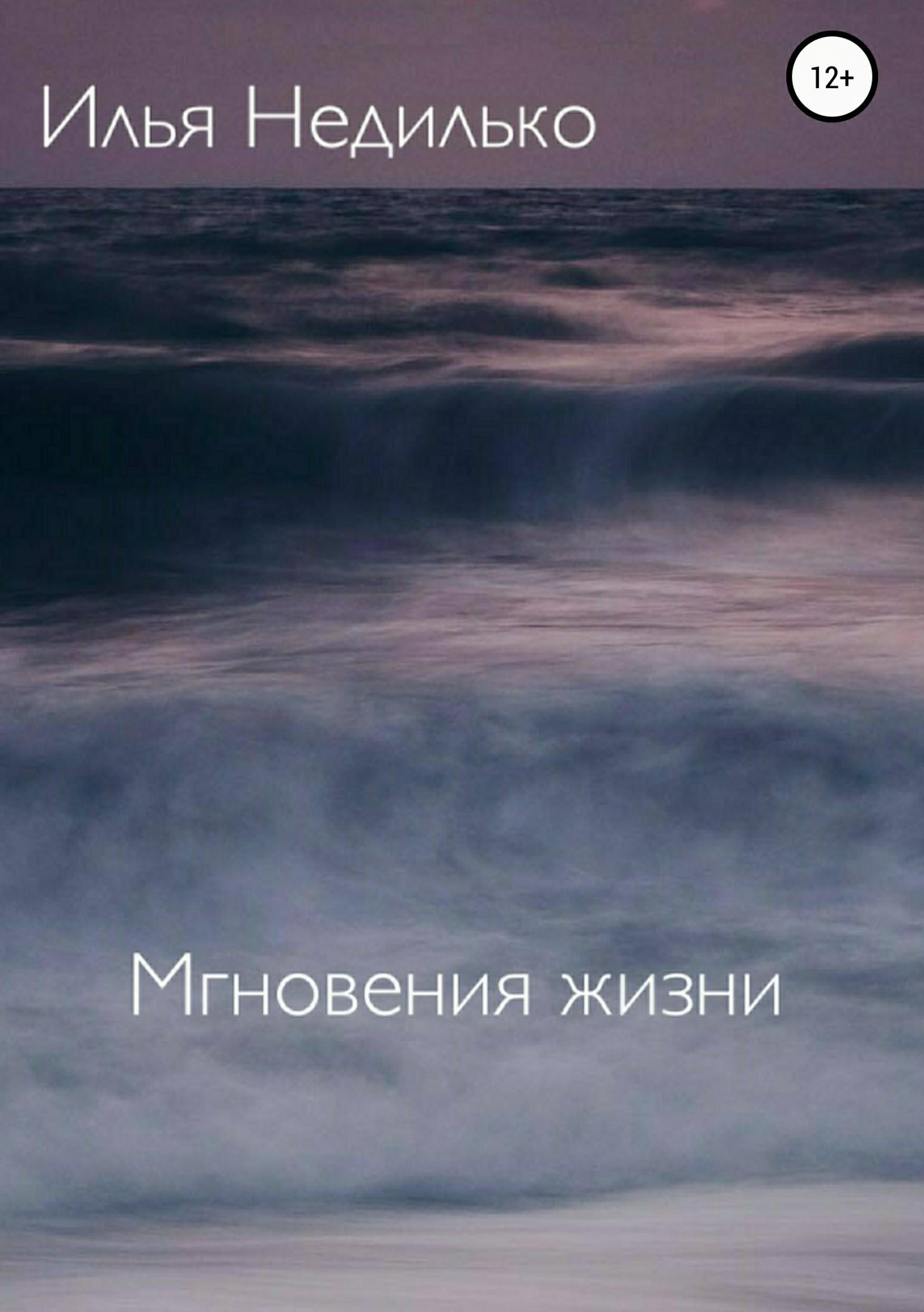Илья Недилько Мгновения жизни цены