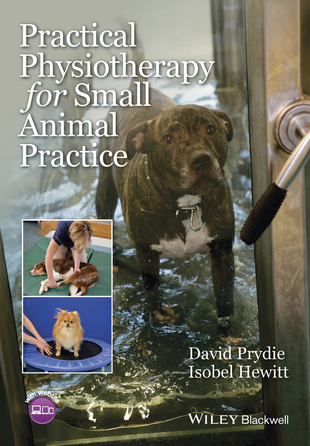 David Prydie Practical Physiotherapy for Small Animal Practice improving orthopedic assessment in a physiotherapy department