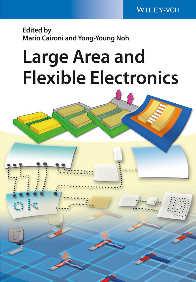 Mario Caironi Large Area and Flexible Electronics siegfried bauer green materials for electronics
