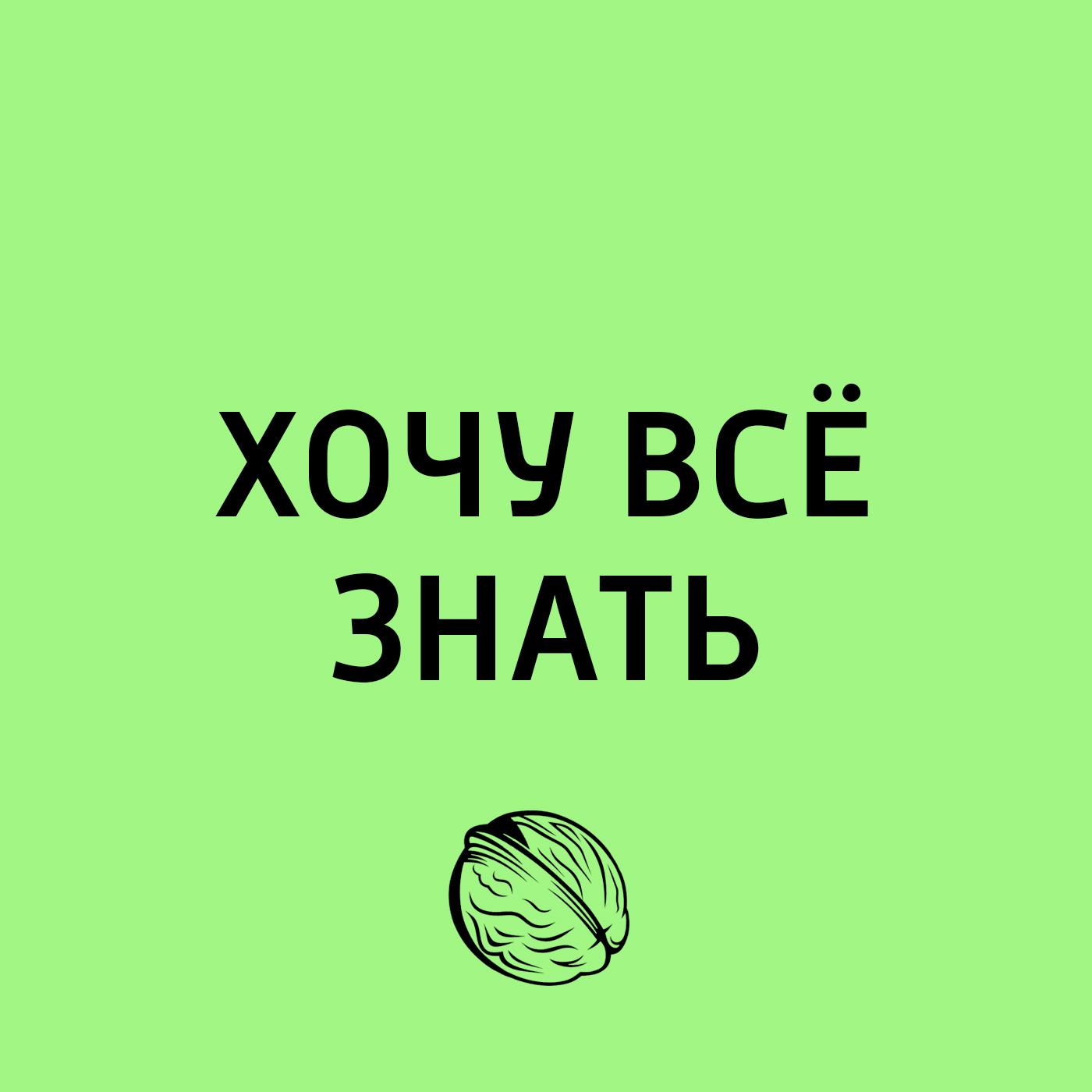 Творческий коллектив программы «Хочу всё знать» ОКАЗАНИЕ ПЕРВОЙ ПОМОЩИ