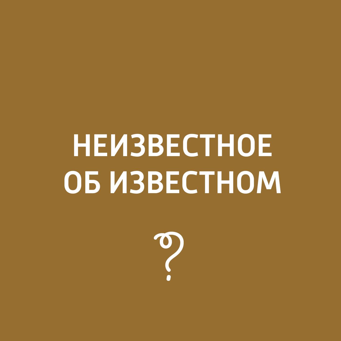 Творческий коллектив программы «Пора домой» Алексей Щусев алексей клочковский жить – интересно