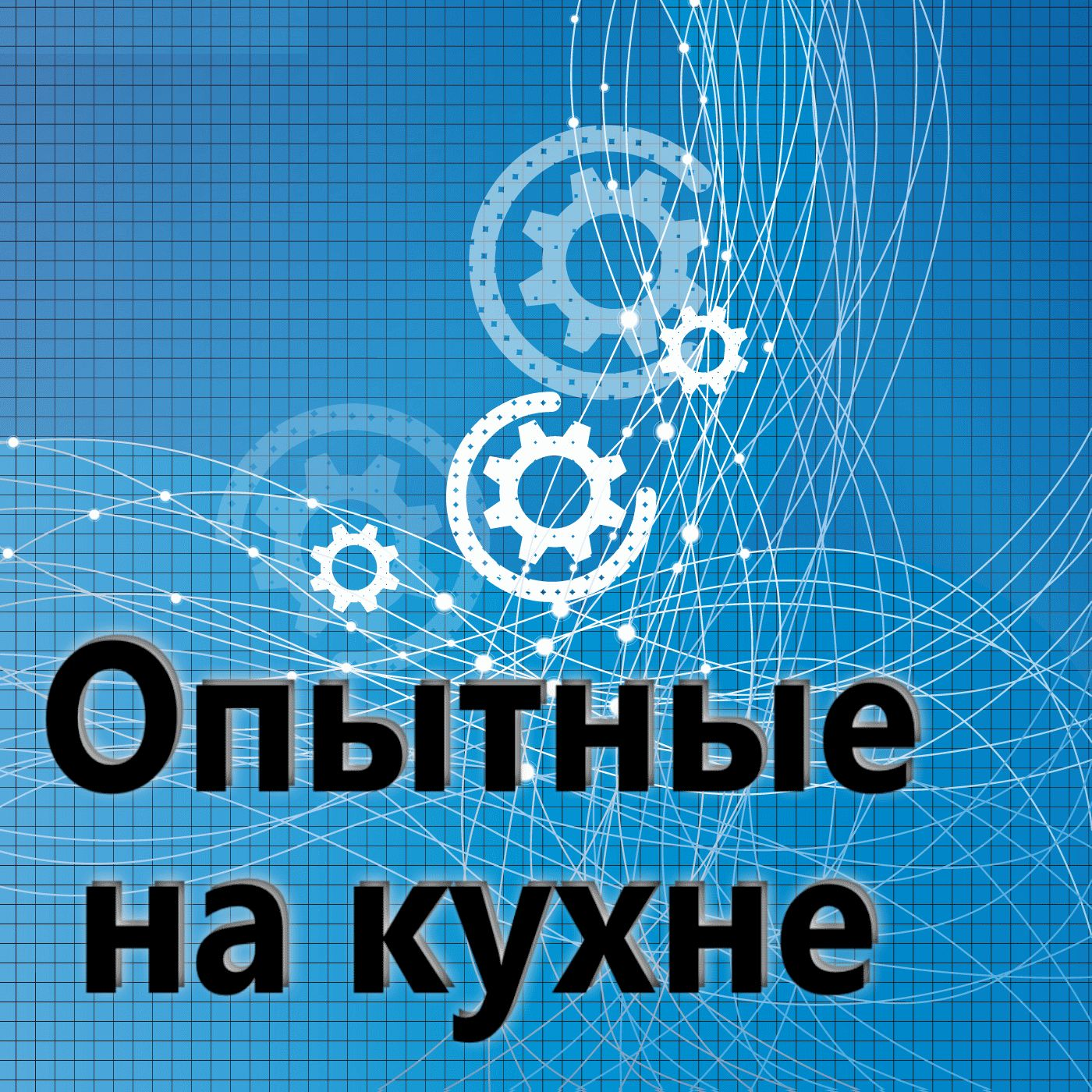 Евгений Плешивцев Опытные на кухне №098