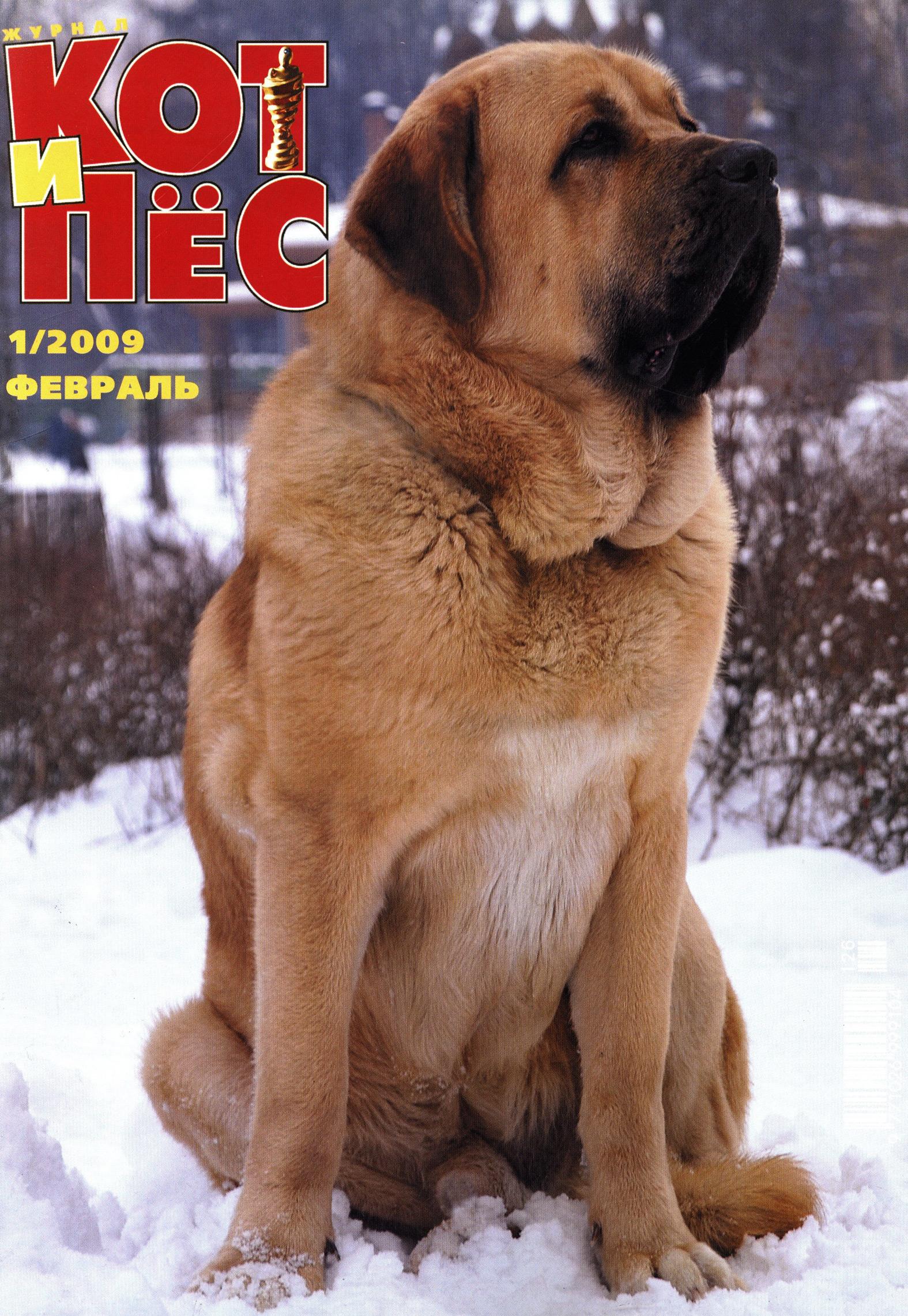 Отсутствует Кот и Пёс №1/2009