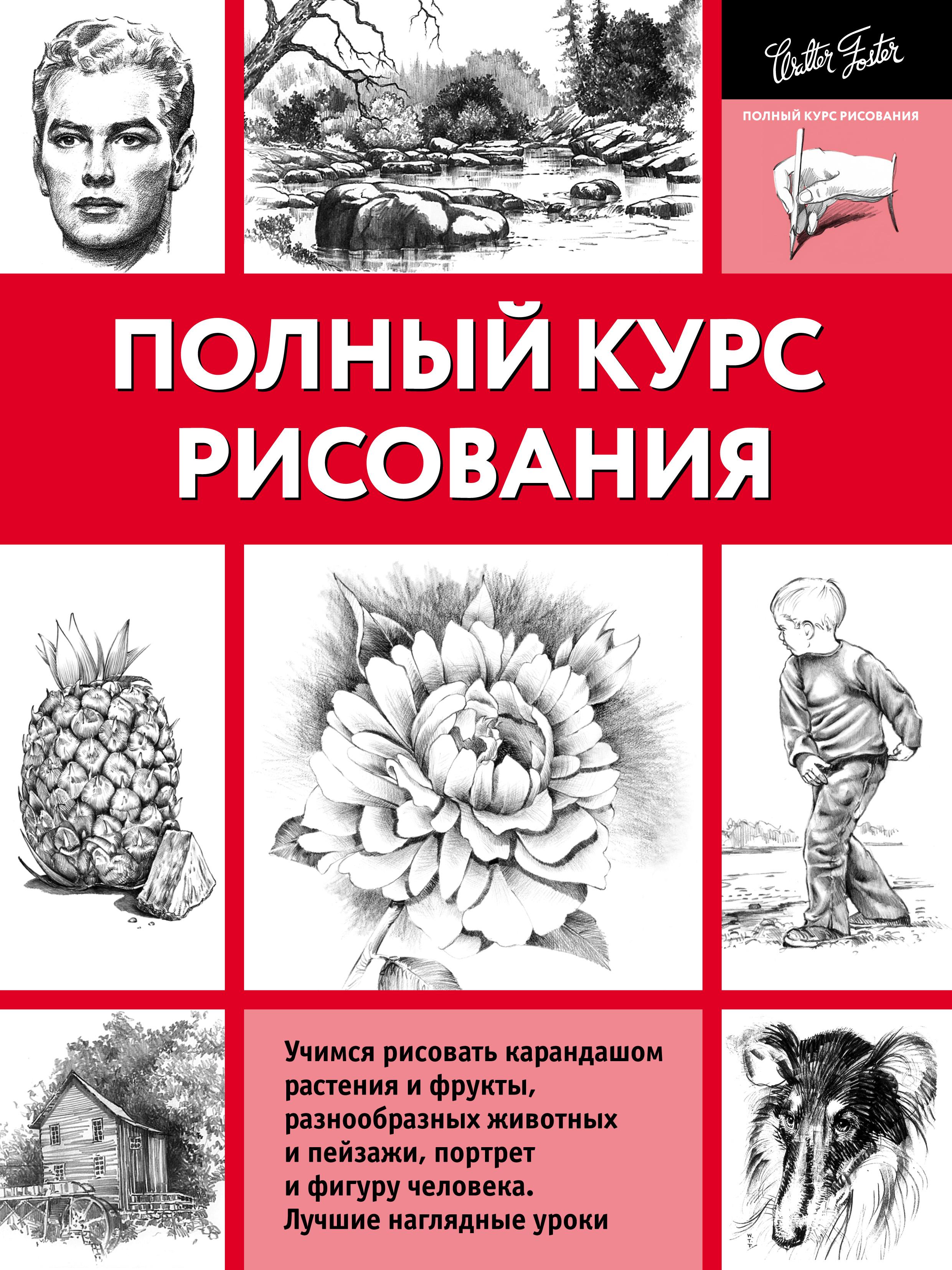 цена на Коллектив авторов Полный курс рисования