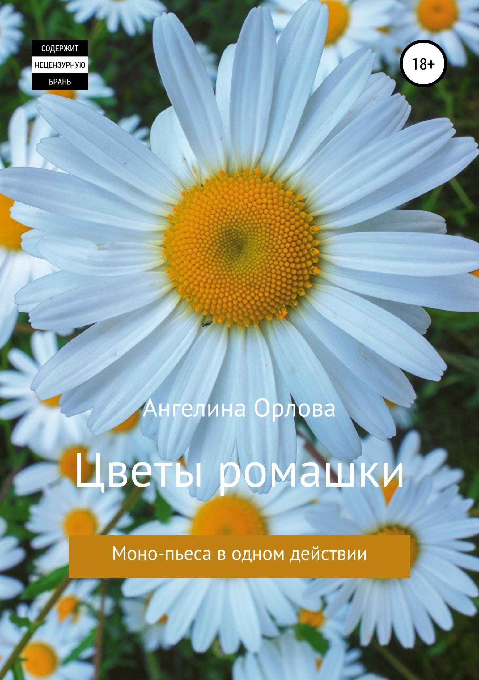 Ангелина Николаевна Орлова Цветы ромашки наташина мечта