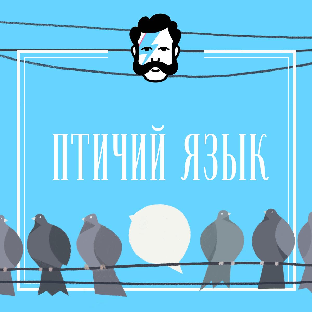 Творческий коллектив «Глаголев FM» Птичий язык. Как отличить стрижа от ласточки