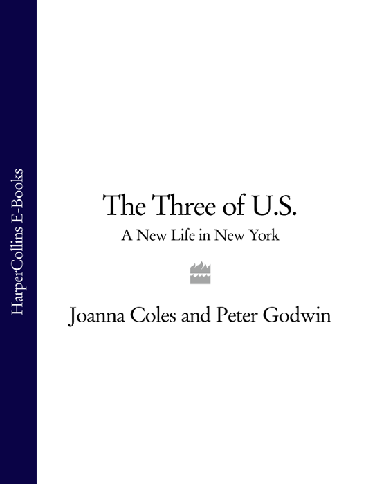 Peter Godwin The Three of U.S.: A New Life in New York peter straub in the night room