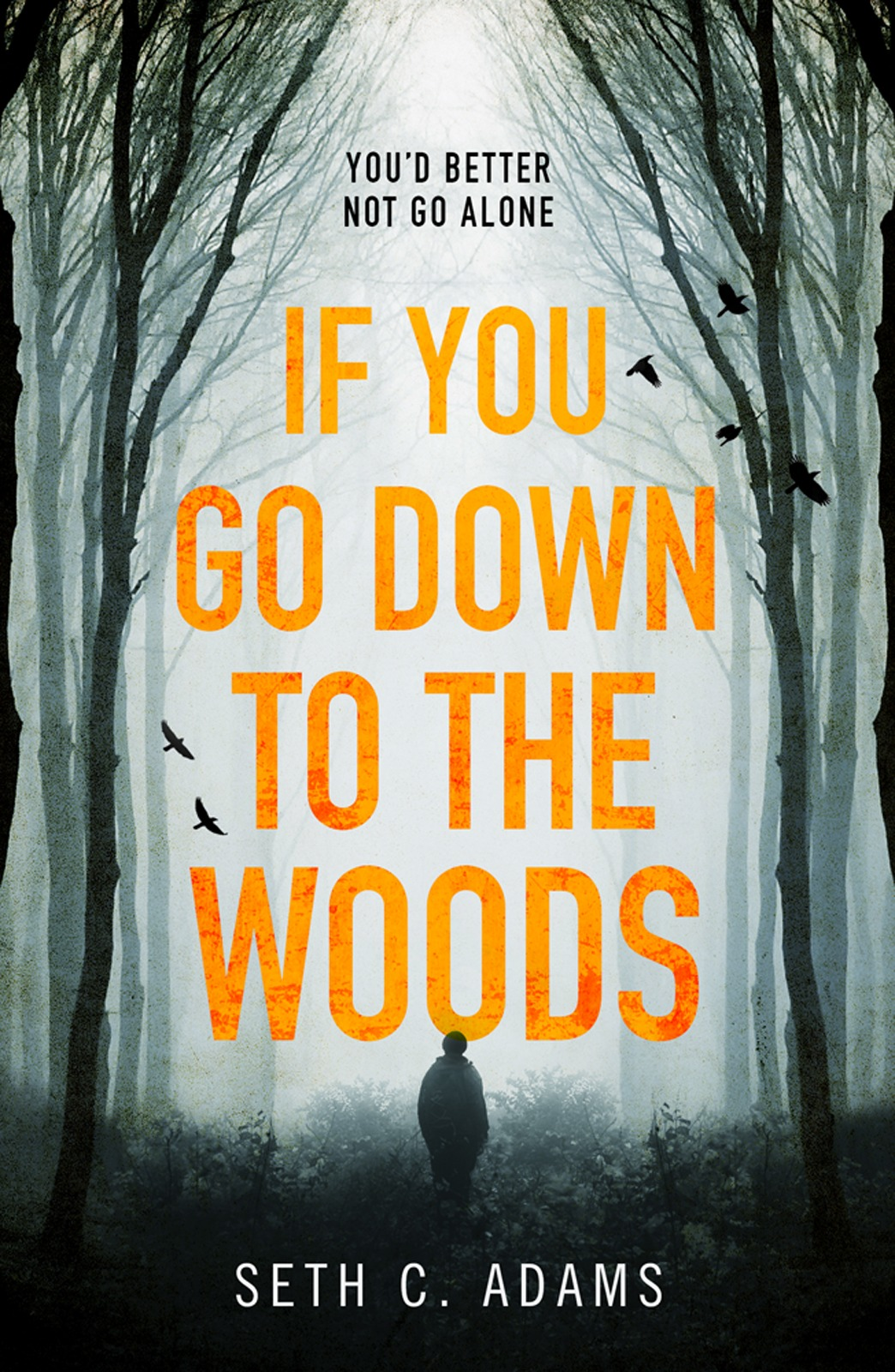 Seth Adams C. If You Go Down to the Woods: The most powerful and emotional debut thriller of 2018!