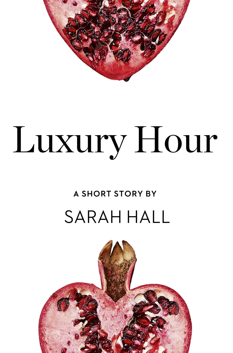 Sarah Hall Luxury Hour: A Short Story from the collection, Reader, I Married Him pekarovskiy valery i rushed from him… i rushed to him…