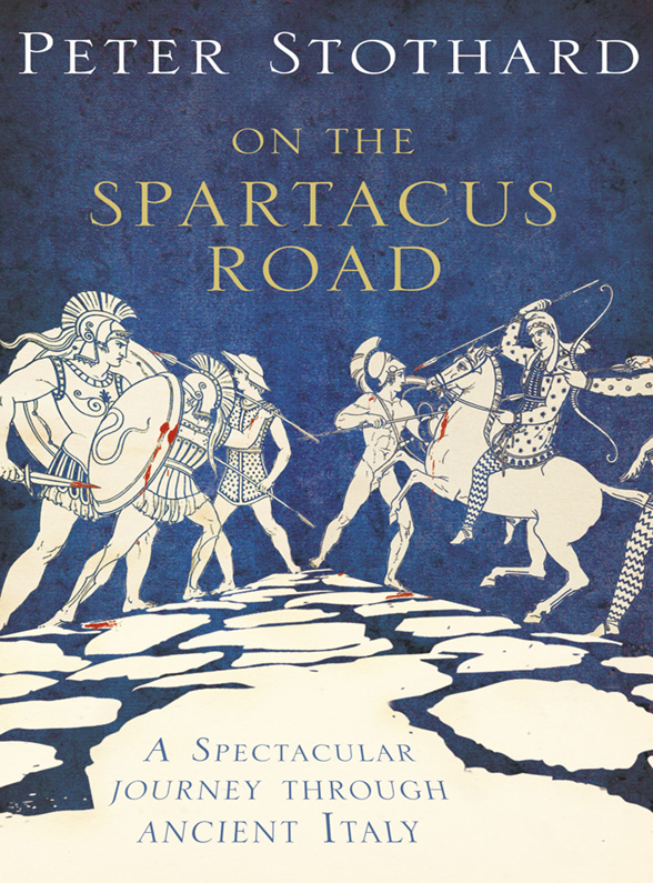 Peter Stothard On the Spartacus Road: A Spectacular Journey through Ancient Italy все цены