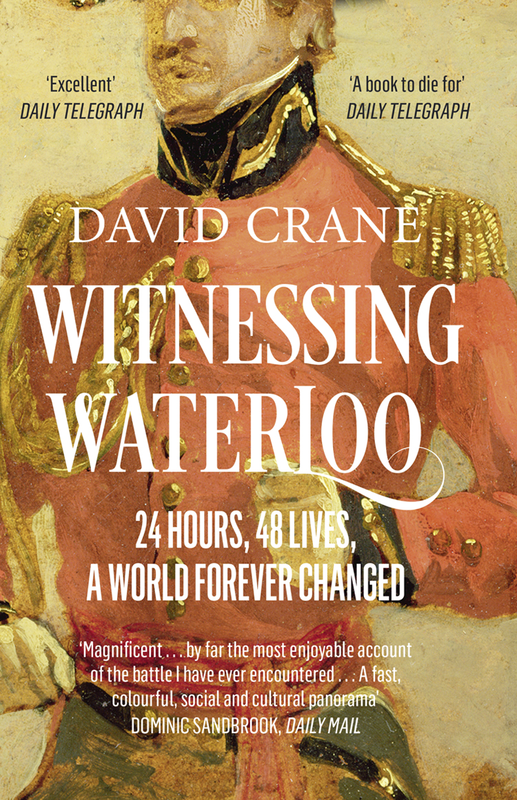 David Crane Witnessing Waterloo: 24 Hours, 48 Lives, A World Forever Changed отсутствует the battle of waterloo
