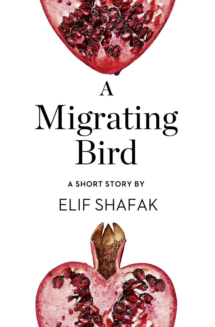 Elif Shafak A Migrating Bird: A Short Story from the collection, Reader, I Married Him hook theodore edward gurney married a sequel to gilbert gurney volume 1