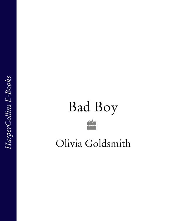 Olivia Goldsmith Bad Boy olivia goldsmith the switch