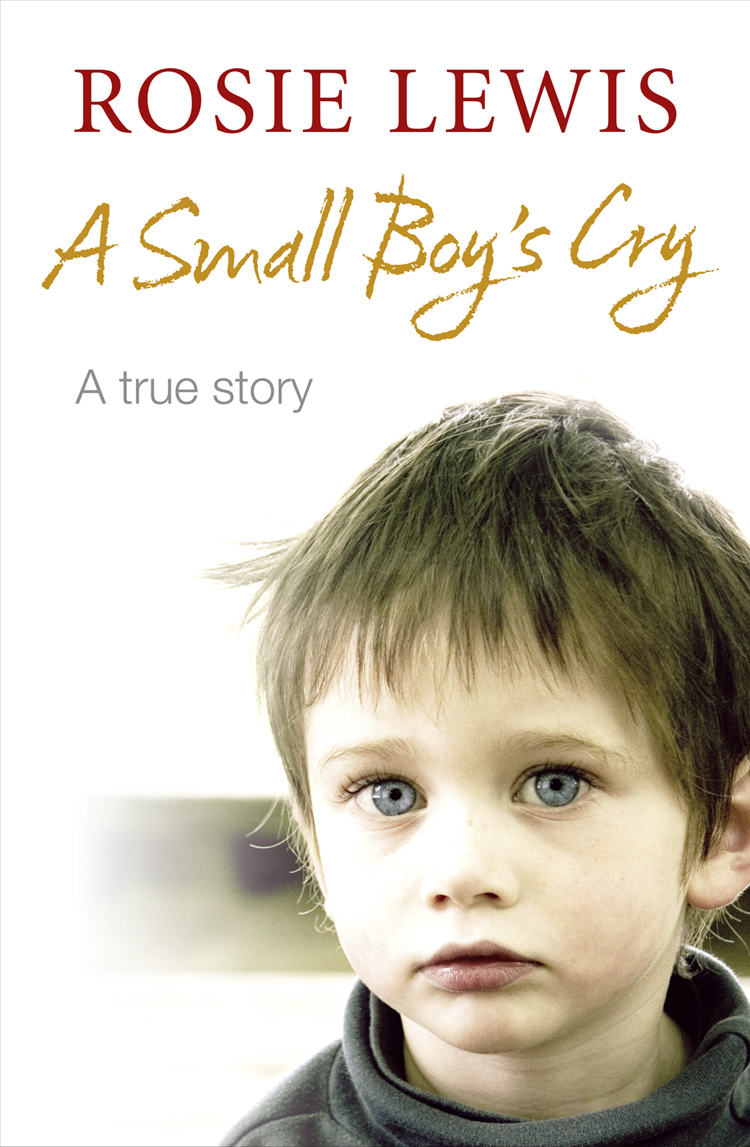 цена Rosie Lewis A Small Boy's Cry