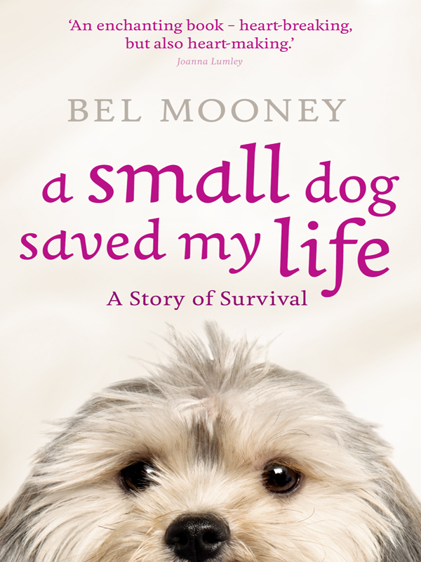 Bel Mooney A Small Dog Saved My Life mary ann sromoski writing saved my life