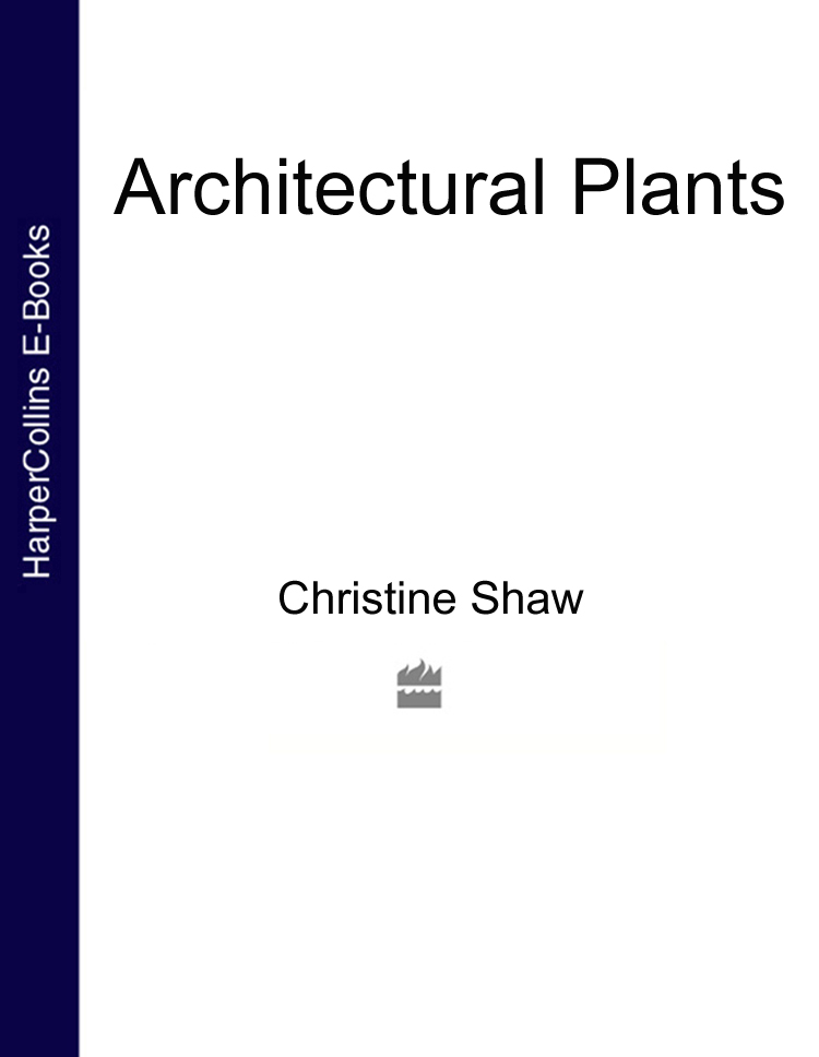 Christine Shaw Architectural Plants architectural grotesque
