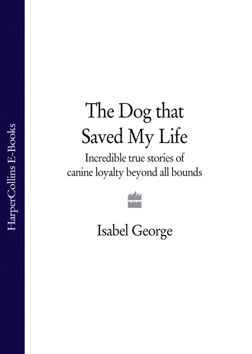 Isabel George The Dog that Saved My Life: Incredible true stories of canine loyalty beyond all bounds the incredible transformation of gregory todd