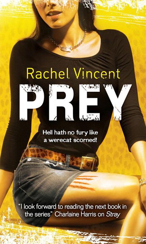 Rachel Vincent Prey broken prey