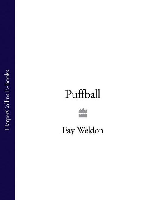 лучшая цена Fay Weldon Puffball