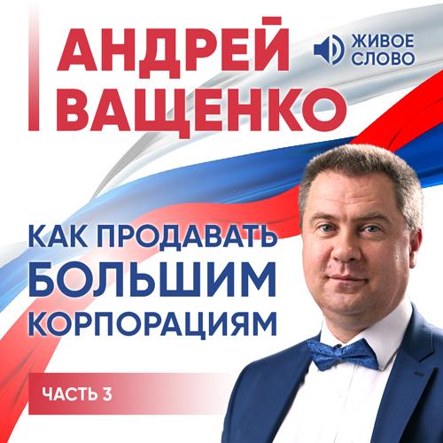Андрей Ващенко Как продавать большим корпорациям. Часть 3 ольга азарова искусство презентации за 30 минут