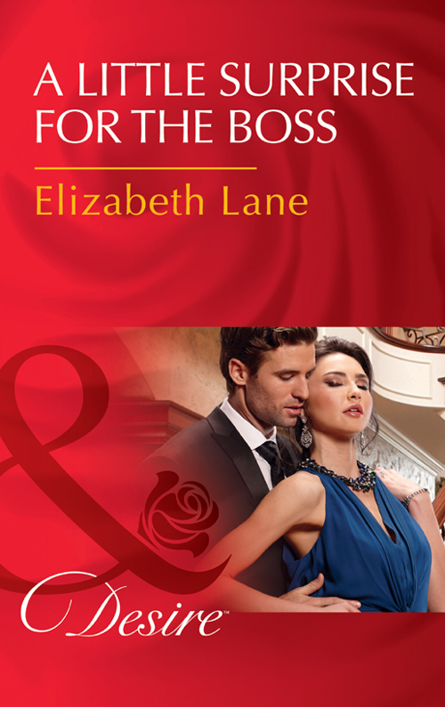 Elizabeth Lane A Little Surprise For The Boss the irresistible offer