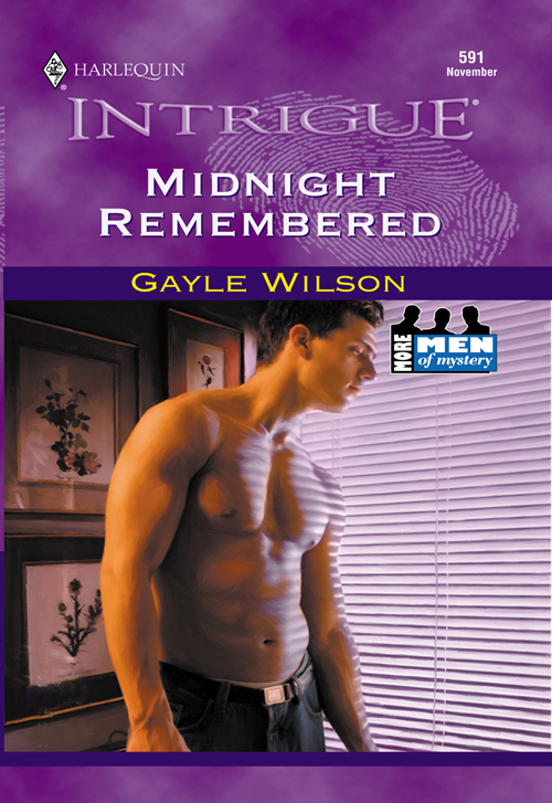 Gayle Wilson Midnight Remembered yiwu partners 25mm