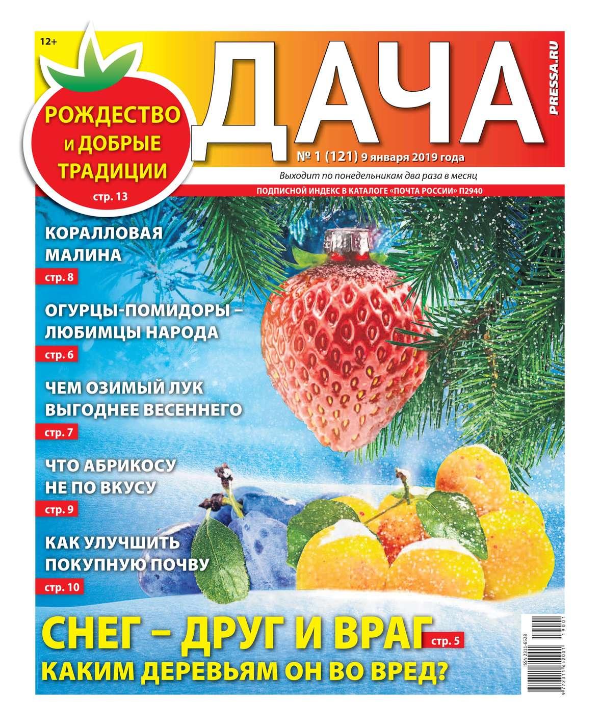 Дача Pressa.ru 01-2019