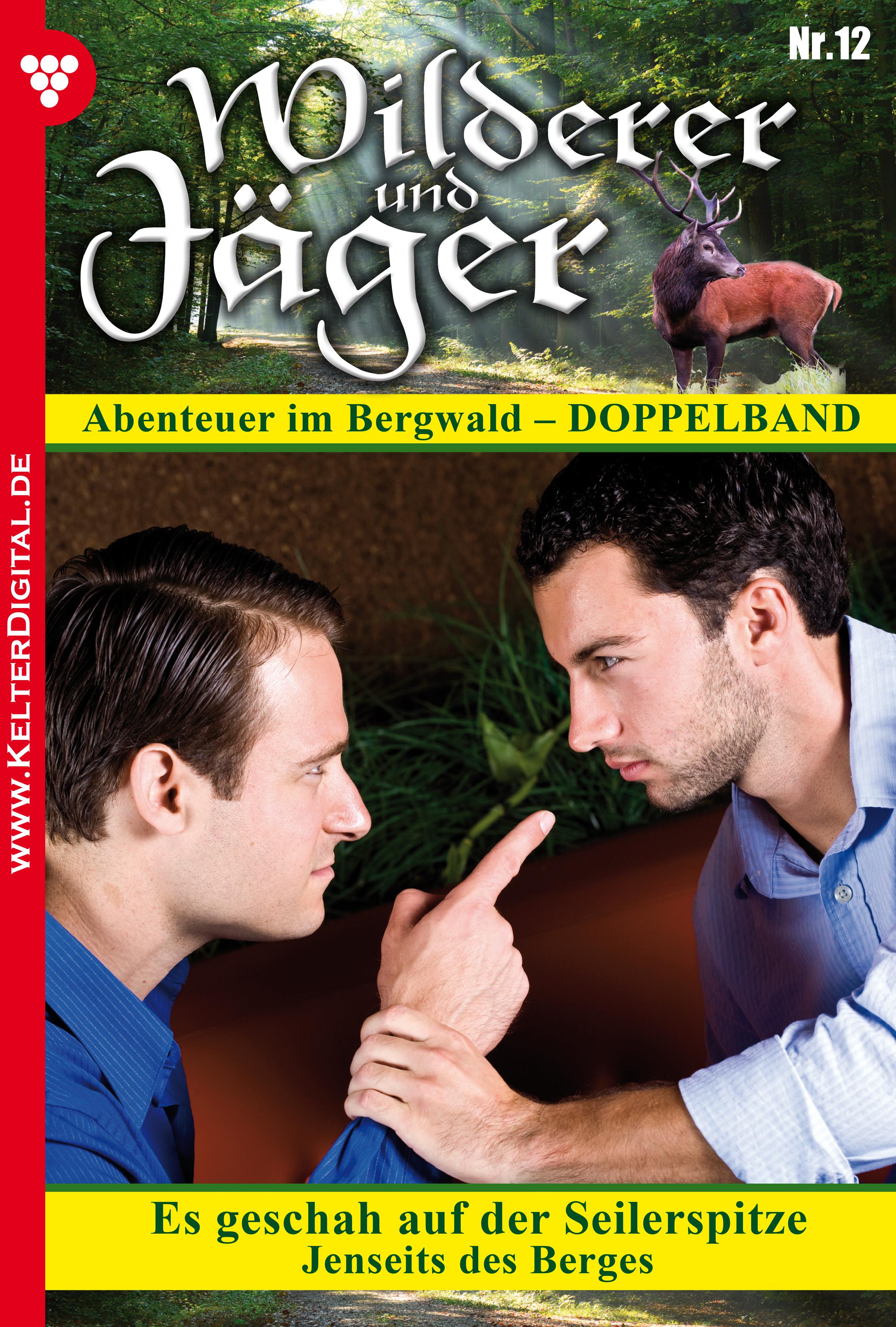 Anne Altenried Wilderer und Jäger 12 – Heimatroman anne katrin hagen kleines und großes hufeisen