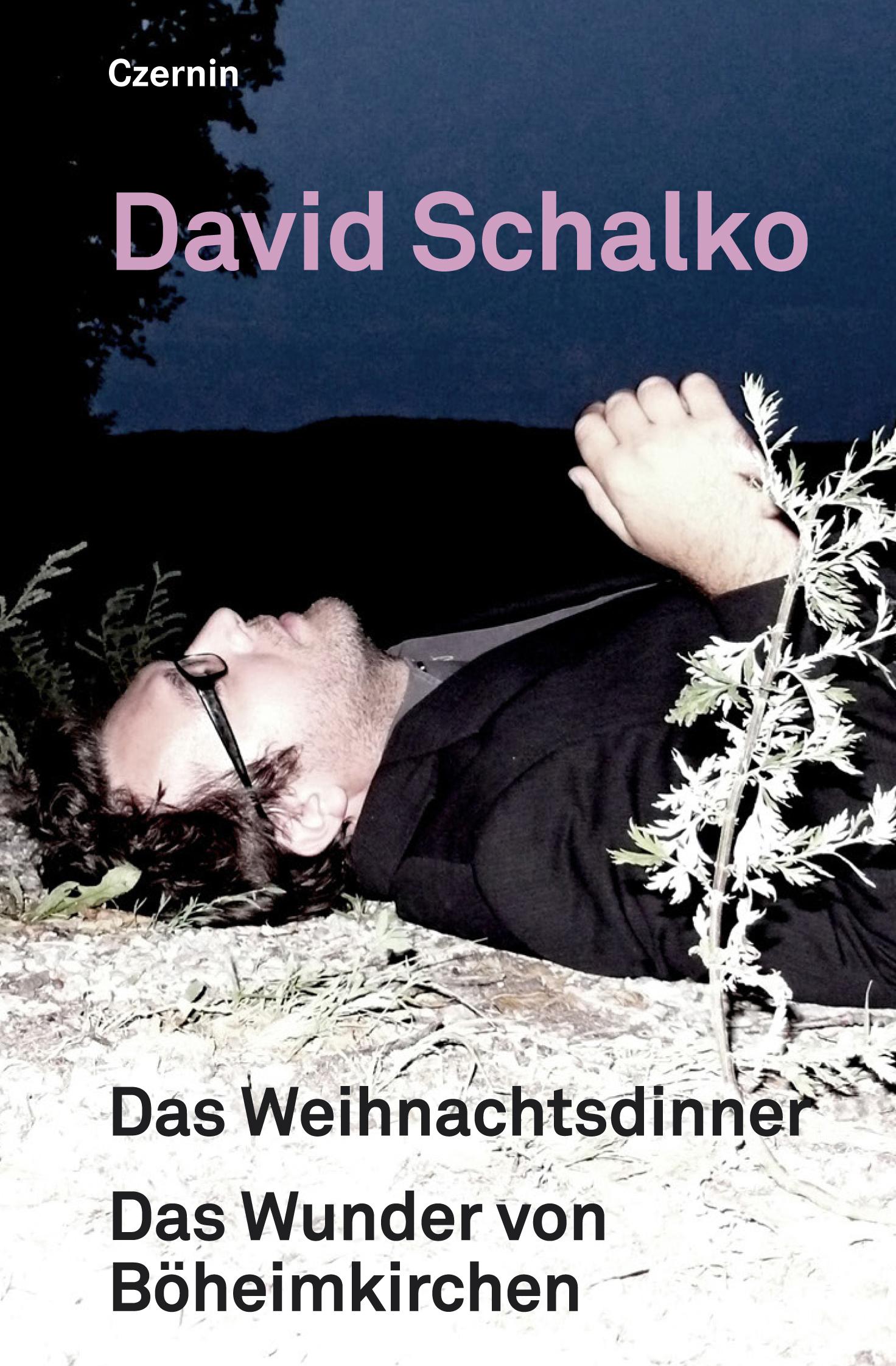 David Schalko Das Weihnachtsdinner. Das Wunder von Böheimkirchen gerhard feix das grosse ohr von paris