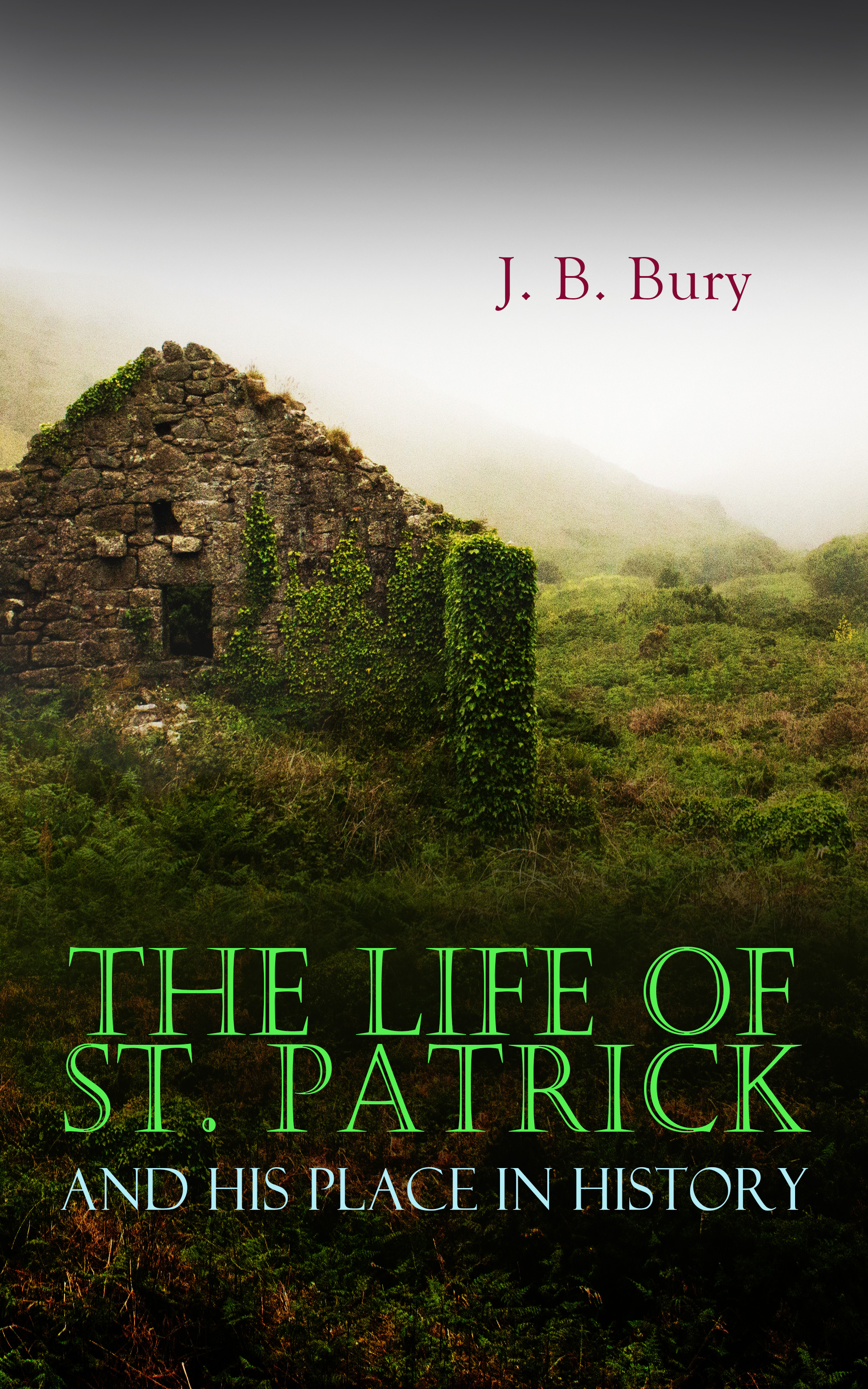 J. B. Bury The Life of St. Patrick and His Place in History patrick j sweeney ii rfid for dummies