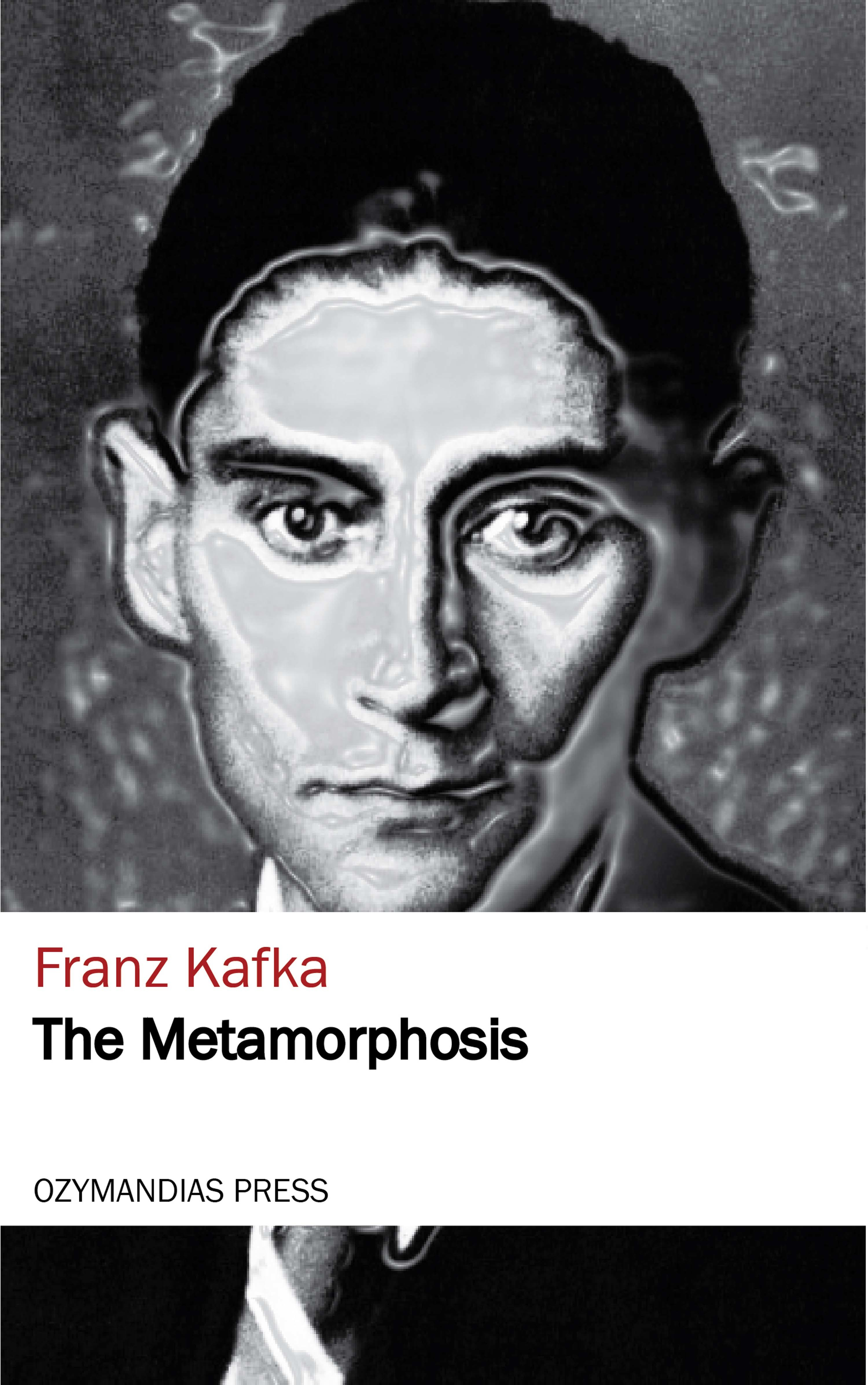 Franz Kafka The Metamorphosis цена и фото