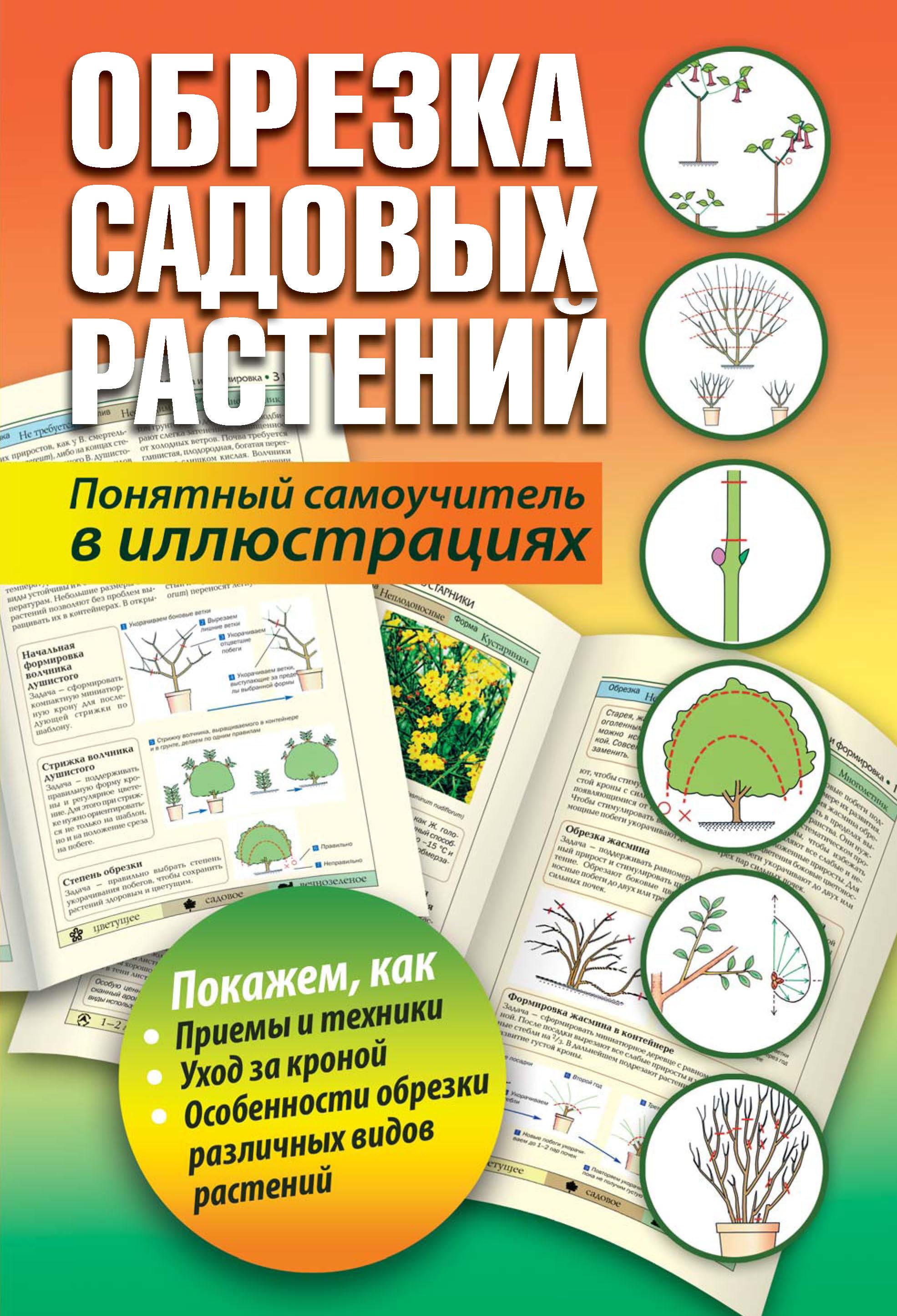 Отсутствует Обрезка садовых растений. Понятный самоучитель в иллюстрациях кудрявец р формирование и обрезка садовых деревьев href